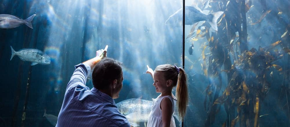 Father and daughter looking at fish at the aquarium