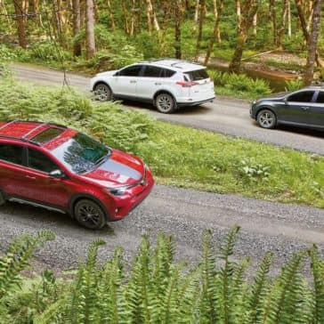 2018 Toyota RAV4 Driving through the forest