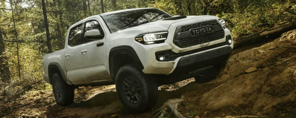 2021 Toyota Tacoma in the forest