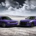 Plum Crazy Purple