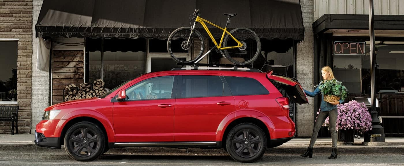 dodge journey with bike on top