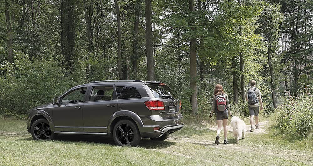 2018 Dodge Journey in the woods