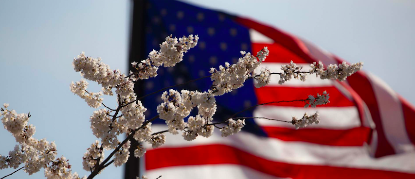 american-flag-and-flowers