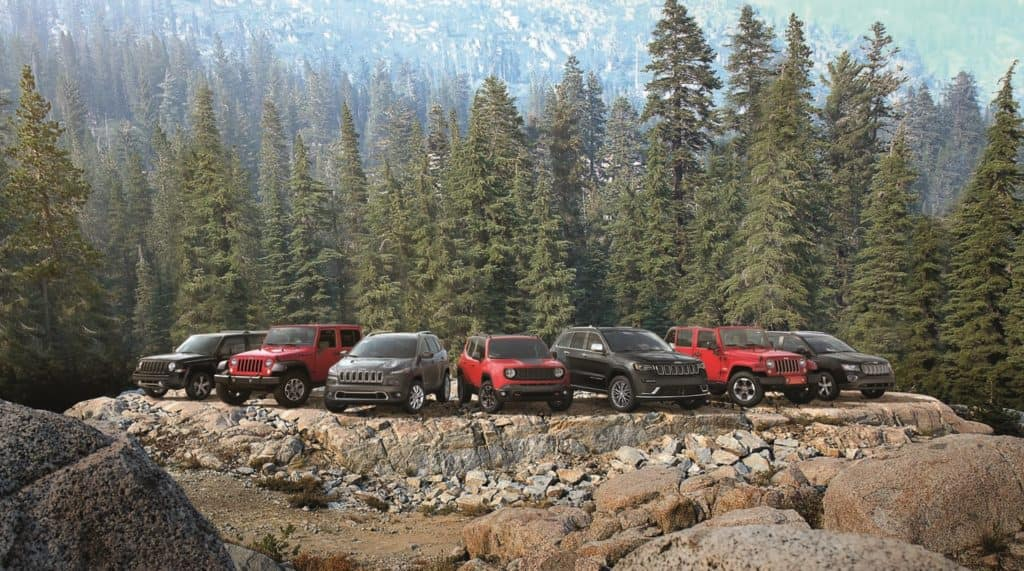 2017 jeep models drivers auto mart