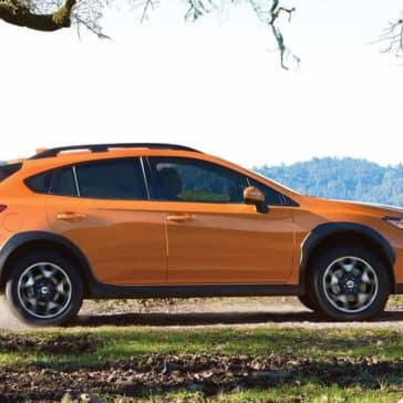 2019 Subaru Crosstrek Off-Roading