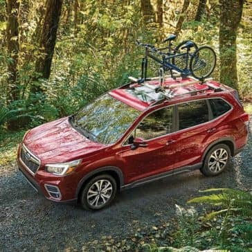 2019 Subaru Forester Driving Through the Woods