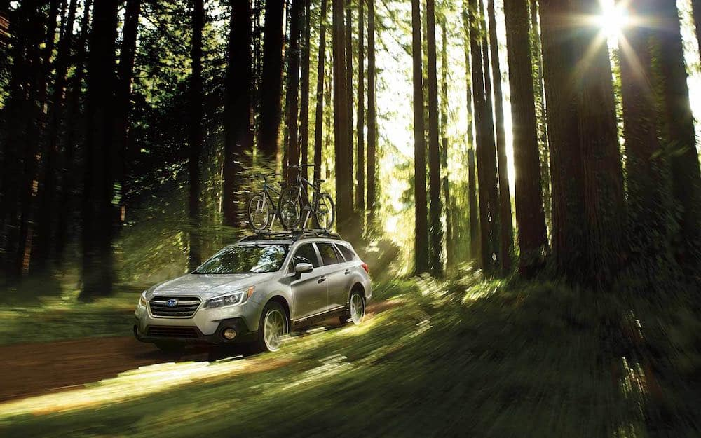 2019 Subaru Outback in a forest