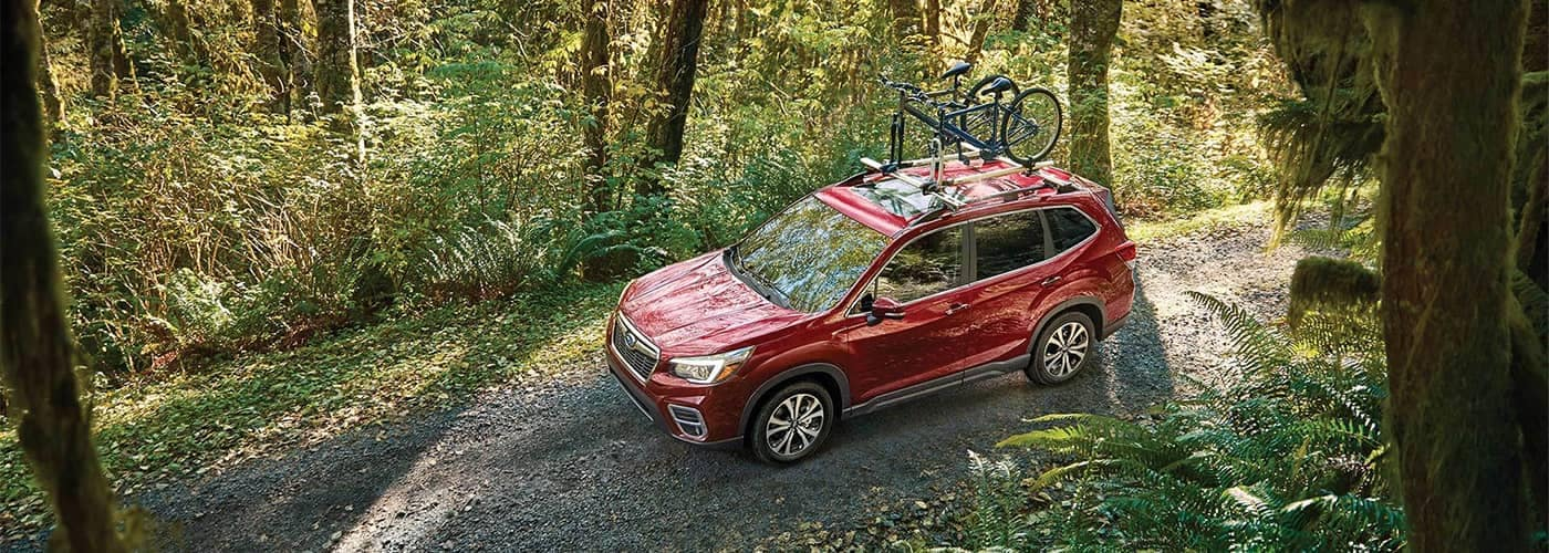 Subaru Forester Driving Through Woods with Bike on Roof Rails