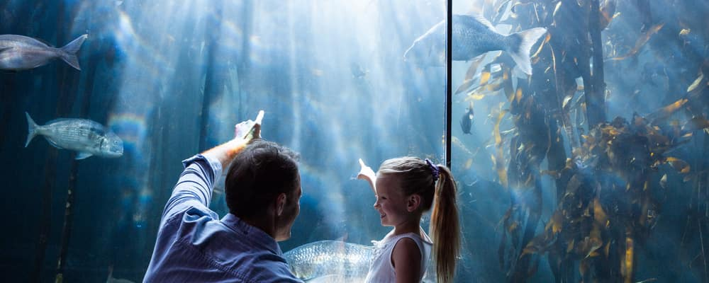 Father and daughter pointing at fish in aquarium tank