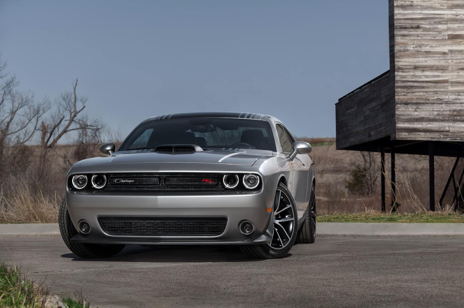 Silver 2019 Dodge Challenger Parked on Rural Road with Decaying Forest in Background with Deer Stand Background