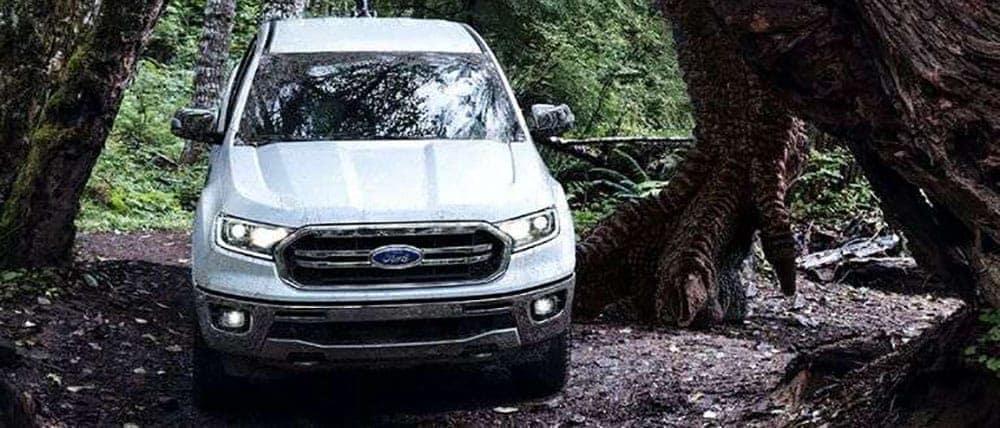 2019-Ford-Ranger-under-tree