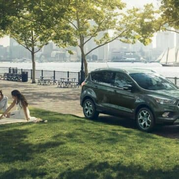 2019-Ford-Escape-Parked-in-the-park