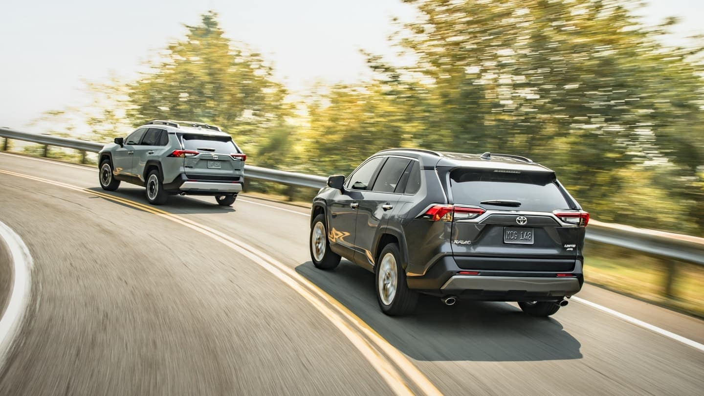 2019 Toyota RAV4 models driving on curved road