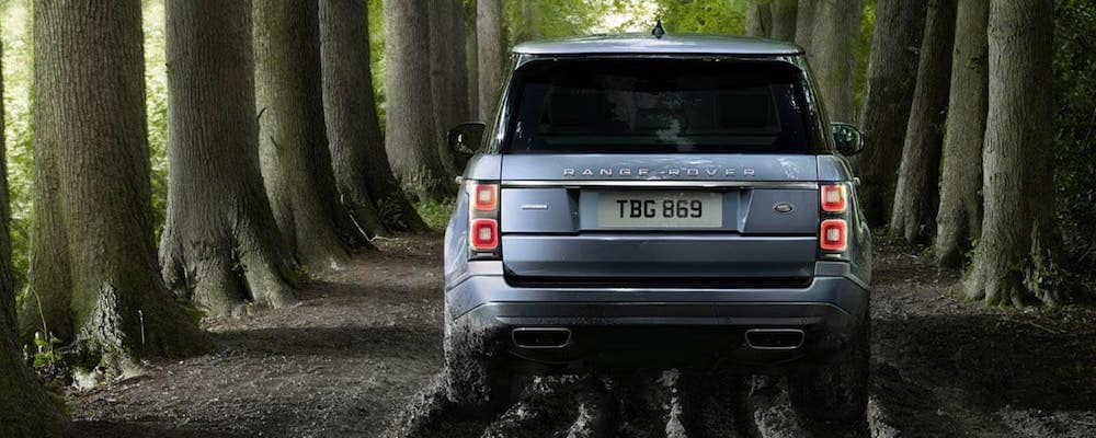 Back view of a gray Range Rover driving through a forested trail