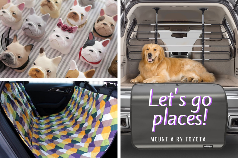 Let's go places! Best Travel Accessories for Your Dog and Cat
