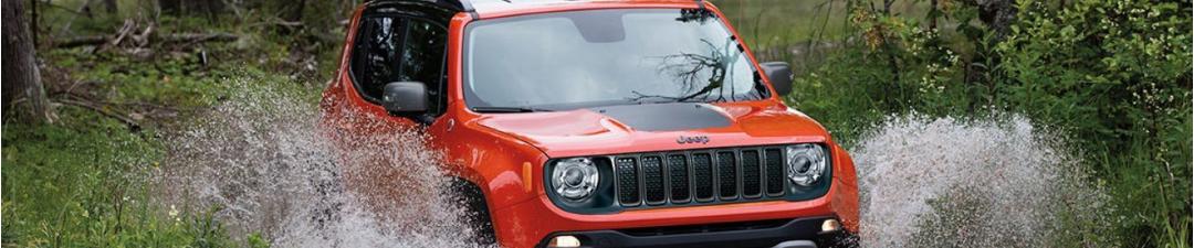 2019 Jeep Renegade at Paulding CDJR in Georgia