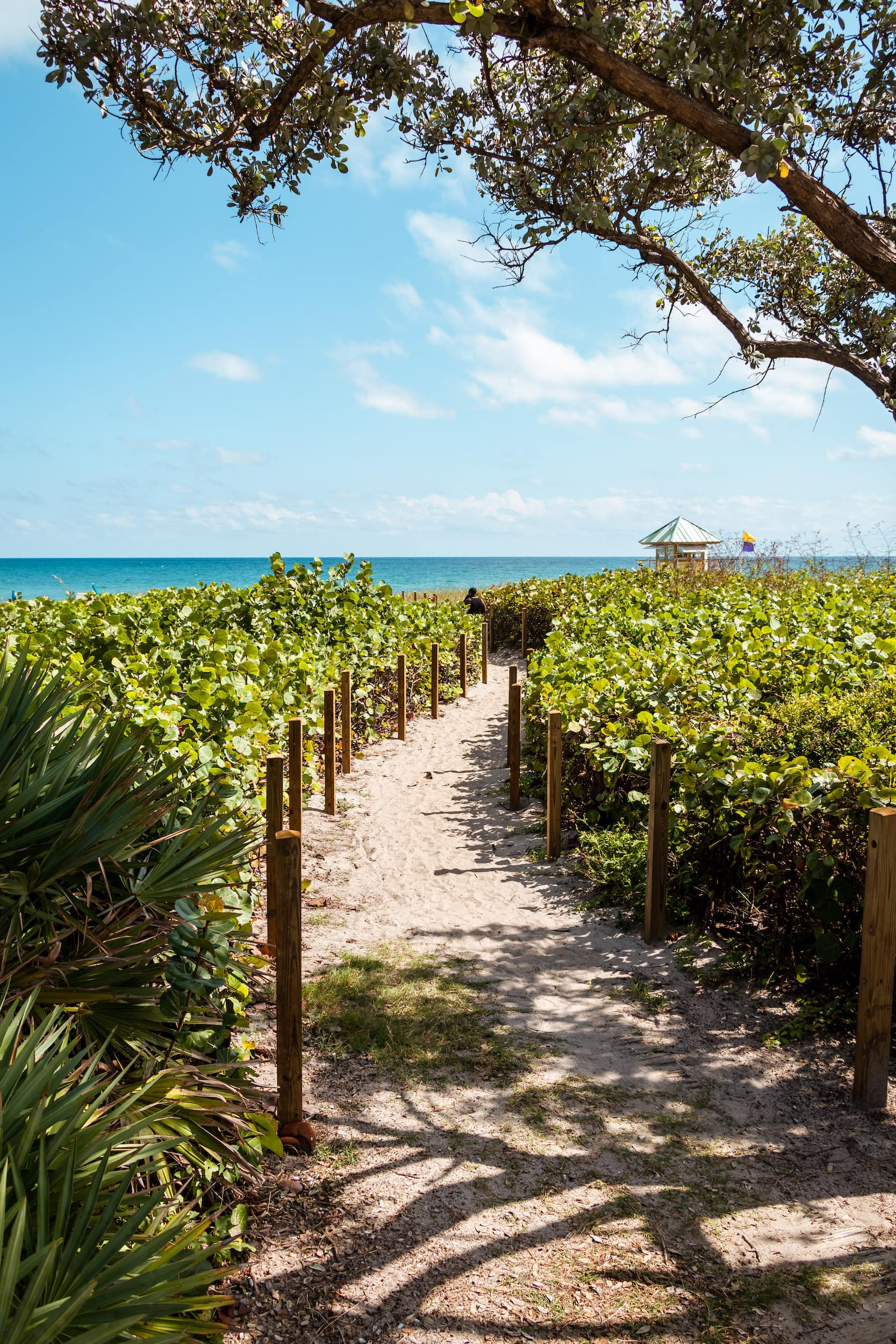 Mizner Park West Palm Beach Florida