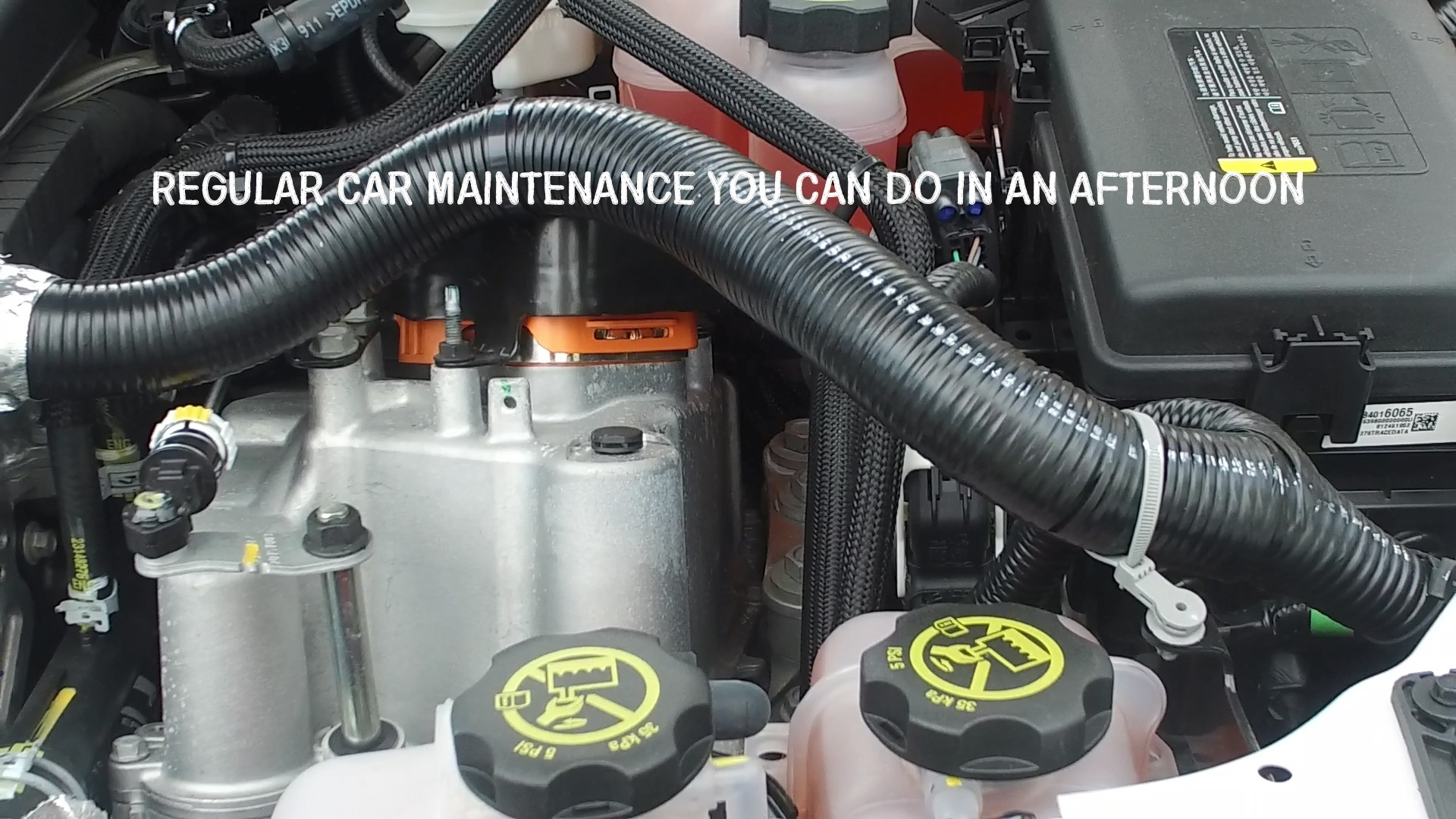 We wash the fuel system of cars with their own hands